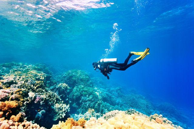 ダイビングを楽しむ男性